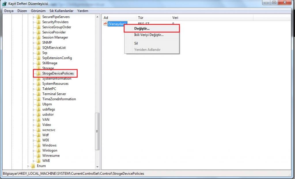 kayıt defteri anahtar değerini değiştirme(strogeDevicePolicies)